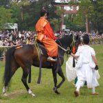 馬の菖蒲1